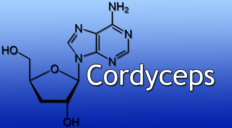 Cordyceps – Benefits, How it works, Side effects, Dosage