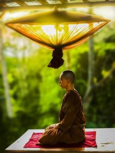 Monk meditating in a forest